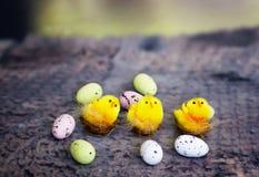 五颜六色的复活节彩蛋和三只装饰小鸡 图库摄影