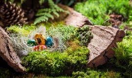 五颜六色的复活节彩蛋在日出的森林里 免版税图库摄影