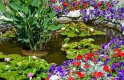 五颜六色的夏天庭院池塘 免版税库存图片