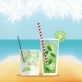 五颜六色的夏天鸡尾酒设计 库存例证