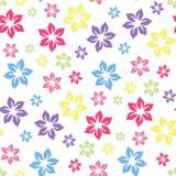 五颜六色的夏季的花卉样式 库存例证