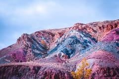 五颜六色的多彩多姿的小山和峡谷在红色口气 免版税图库摄影