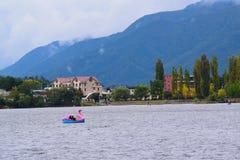 五颜六色的天鹅桨划船在日本 图库摄影