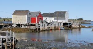 五颜六色的小屋在沿海新斯科舍4K 股票录像