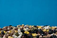 五颜六色的小海向在蓝色背景的纹理扔石头 免版税库存照片