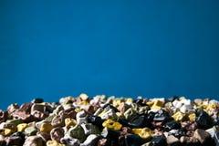 五颜六色的小海向在蓝色背景的纹理扔石头 免版税库存图片