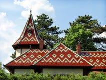 五颜六色的屋顶 库存照片