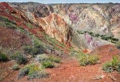 五颜六色的山在沙漠 免版税图库摄影