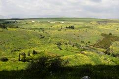 五颜六色的山草甸 库存照片