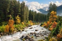 五颜六色的山风景在秋天 图库摄影