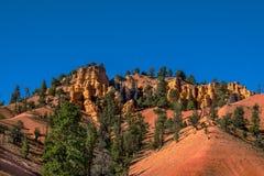 五颜六色的岩石和树在犹他,美国 库存照片