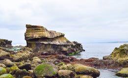 五颜六色的岩石处于低潮中被暴露在拉霍亚小海湾在圣地亚哥,加利福尼亚 库存图片