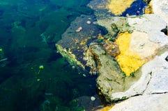 五颜六色的岩石岸 库存图片