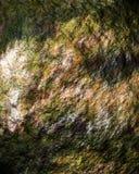 五颜六色的岩石纹理 图库摄影