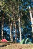 五颜六色的帐篷 免版税库存照片