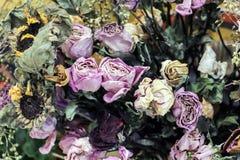 五颜六色的干燥花花束 库存照片