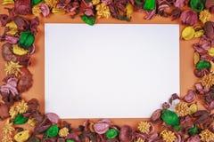 五颜六色的干花和叶子框架围拢的白皮书片断 顶视图,平的位置 复制文本的空间 库存照片