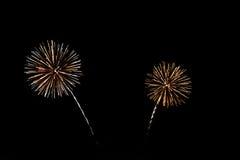 五颜六色的庆祝烟花 免版税图库摄影