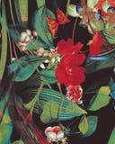 五颜六色的异乎寻常的背景纹理 免版税库存图片