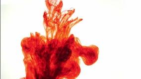 五颜六色的彩虹油漆从混合的底部滴下在水中 特写镜头 影视素材