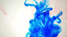 五颜六色的彩虹油漆从混合的底部滴下在水中 特写镜头 股票视频