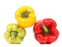 五颜六色的成熟胡椒。 免版税库存照片