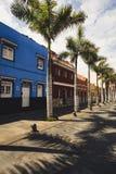 五颜六色的房子和棕榈树门面在典型的canarian街道,普埃尔托德拉克鲁斯,特内里费岛,西班牙上 库存照片
