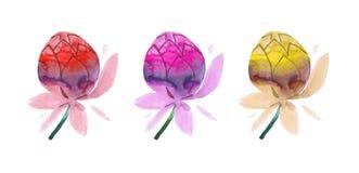 五颜六色的手画水彩花 库存例证