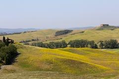 五颜六色的托斯坎小山,意大利 免版税库存照片