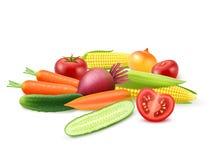 五颜六色的新鲜蔬菜模板 皇族释放例证