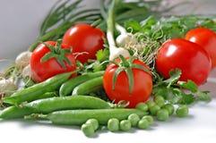 五颜六色的新鲜蔬菜 免版税库存照片