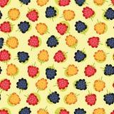 五颜六色的无缝的浆果 免版税库存图片
