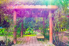 五颜六色的日本庭院入口和道路 库存照片