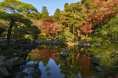 五颜六色的日本庭院在日落期间的Ginkaku籍寺庙京都在秋天季节 免版税图库摄影
