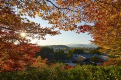 五颜六色的日本庭院在日落期间的Ginkaku籍寺庙京都在秋天季节 免版税库存图片
