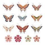 五颜六色的日本式蝴蝶和花 免版税库存图片