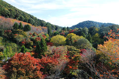 五颜六色的日本 免版税库存照片