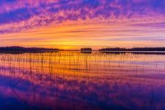 五颜六色的日落在北威斯康辛 免版税库存图片