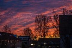 五颜六色的日落在荷兰镇 树现出轮廓反对平衡的天空 库存图片