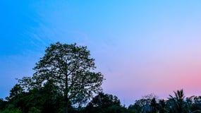 五颜六色的日落天空 免版税库存照片