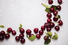 五颜六色的明亮的样式用成熟樱桃和叶子 图库摄影