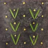 五颜六色的明亮的样式由花和小尖峰制成 库存照片
