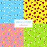 五颜六色的春天甲虫汇集墙纸集合 免版税库存图片