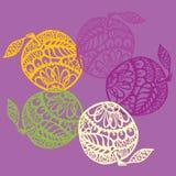 五颜六色的有花边的苹果 图库摄影