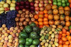五颜六色的果子 免版税图库摄影