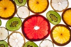 五颜六色的柑桔的混合在白色的 免版税库存图片