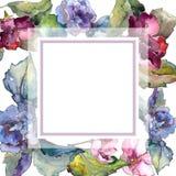 五颜六色的栀子花 花卉植物的花 框架边界装饰品正方形 免版税库存照片