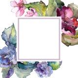五颜六色的栀子花 花卉植物的花 框架边界装饰品正方形 免版税库存图片