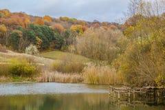 五颜六色的树在湖附近的秋天森林里 免版税库存图片