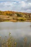 五颜六色的树在湖附近的秋天森林里 库存照片